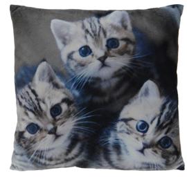 Poduszka Cats 45x45 cm- wzór 3